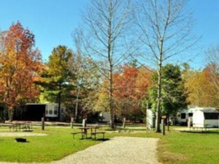 Image for Tranquil Timbers Camping Resort